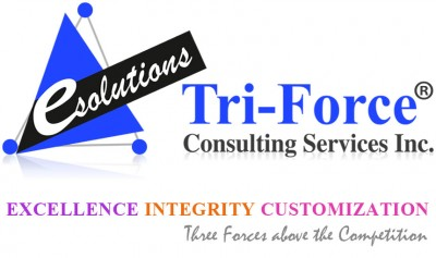 Tri-Force Consulting Services, Inc.